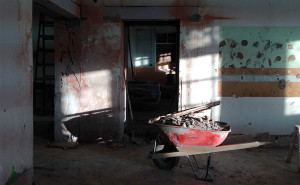 Wheelbarrow in Sunlight